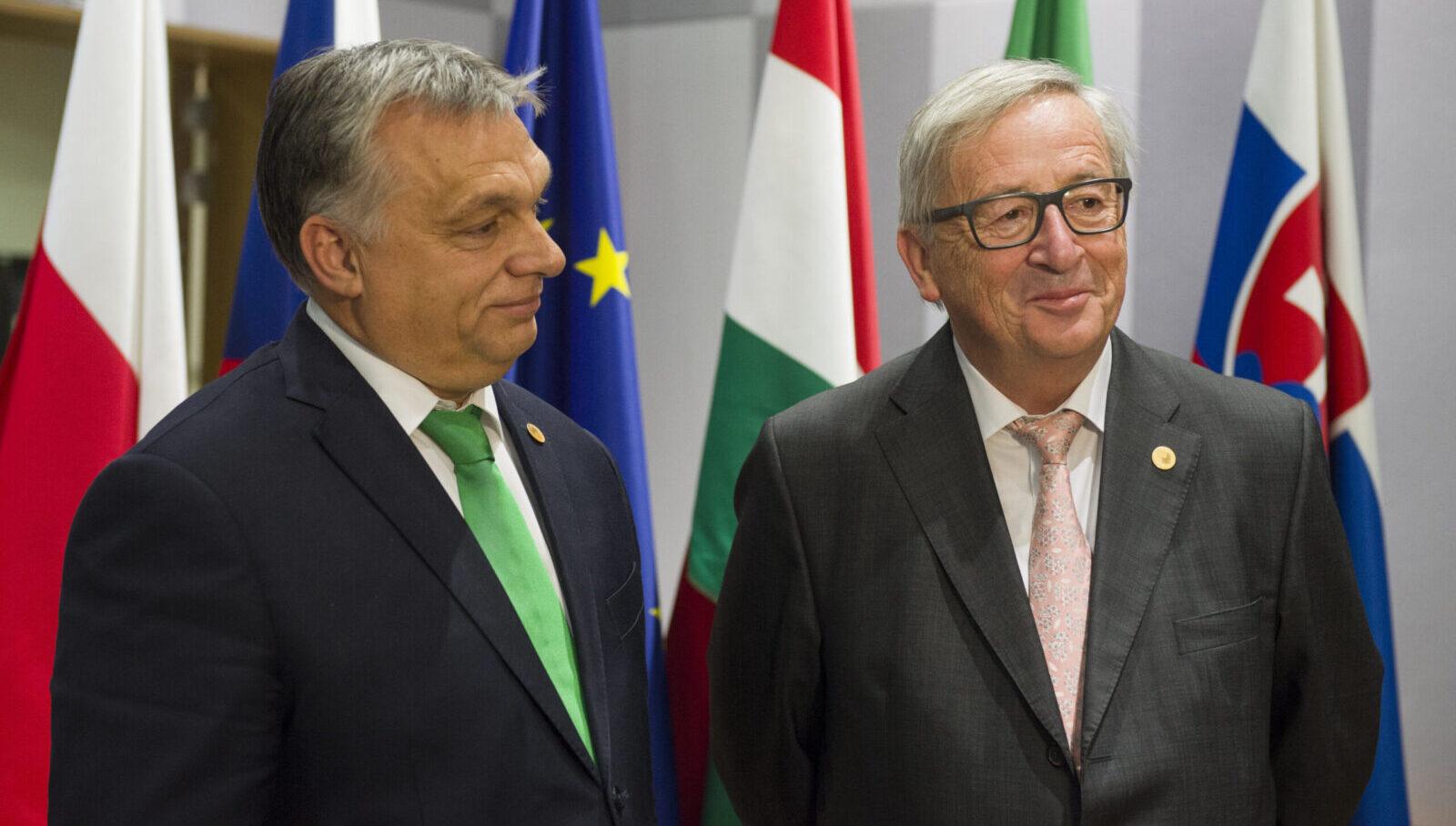 Worum es bei der Europawahl wirklich geht - Reporter.lu