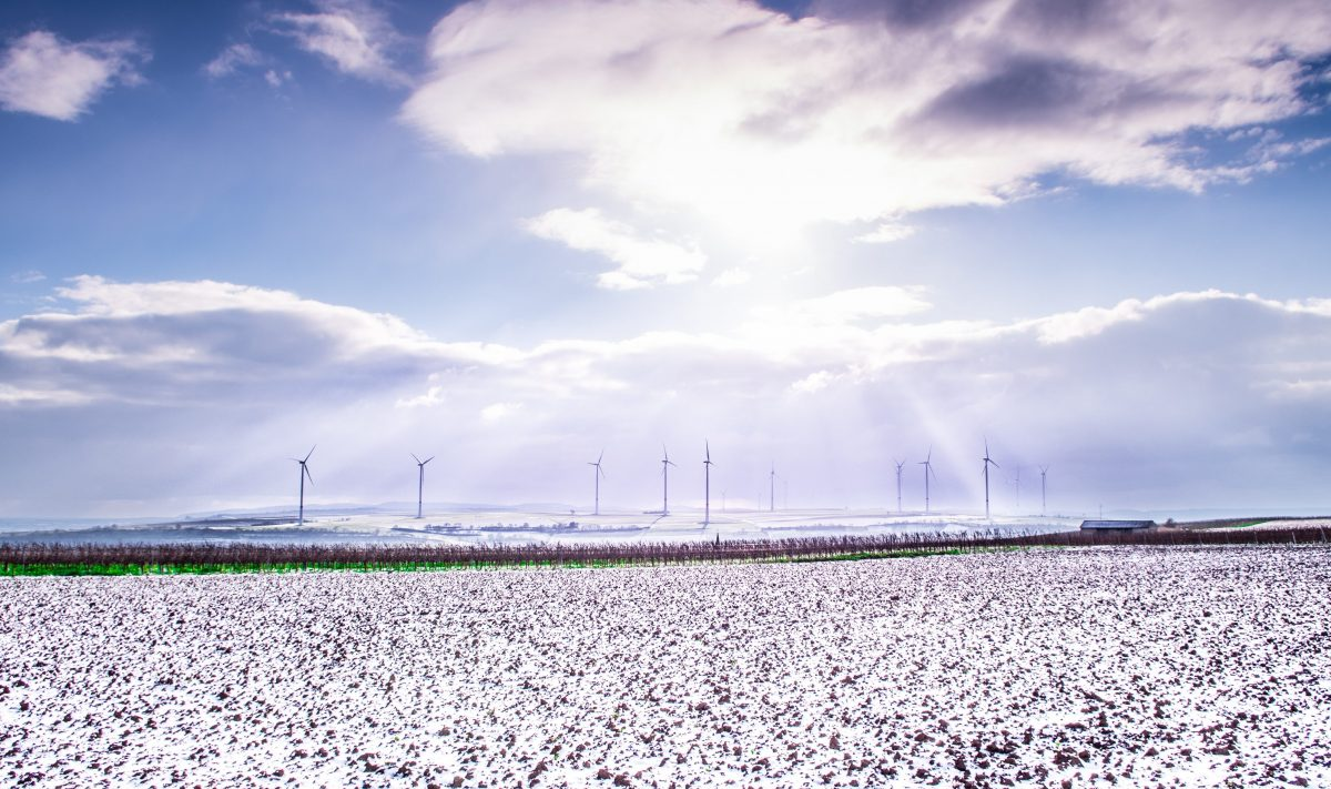 Klimaschutz: Der Neun-Milliarden-Euro-Plan - REPORTER